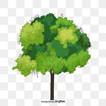 Tree Png Images Download 85000 Tree Png Resources With Transparent Background Tree Photoshop Watercolor Trees Tree Drawing