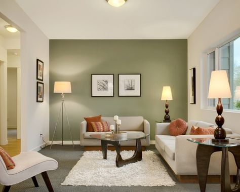 Wonderful Sage Green Living Room Ideas: Contemporary Living Room With Terra Cotta And Sage Green Wall Plus White Fur Rug And Cream Color Sofa https://www.stonebridge.uk.com/course/interior-design                                                                                                                                                     More