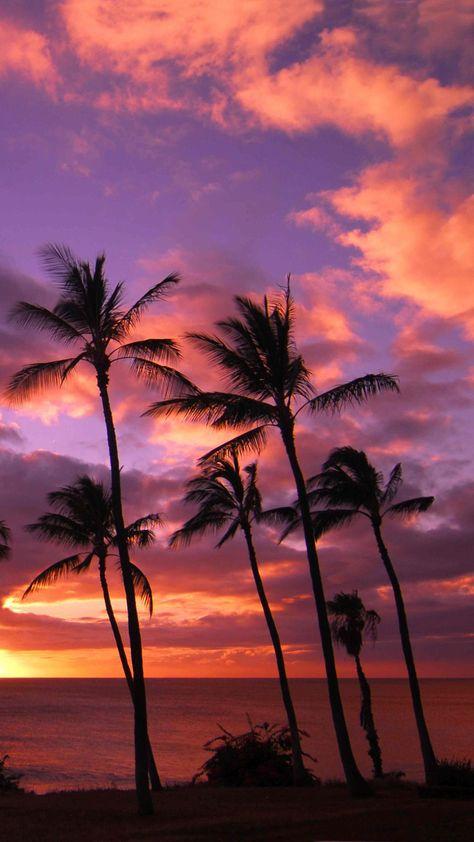 1080x1920 Hawaii Sunset Iphone Wallpaper Hd Sunset Iphone