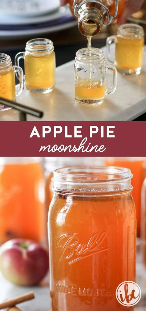 Learn how to make homemade Apple Pie Moonshine with this easy #recipe! #homemade #apple #pie #moonshine #applepie #fallcocktail
