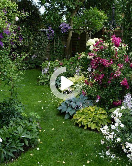 Rosen Und Clematis Clerotic 2014 Seite 23 Mein Schoner Garten Forum Schone Clematis In 2020 Beautiful Gardens Clematis Garden Forum