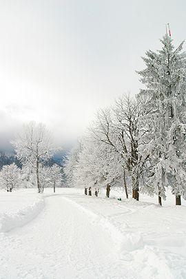 Winter Und Weihnachtsgedichte.Weihnachtsgedichte Wer Kann Sie Noch Klassische Weihnacht
