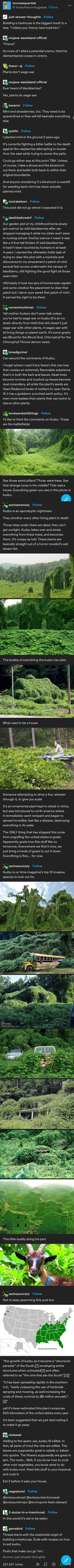 The More You Know, Good To Know, Weird Facts, Fun Facts, Funny Cute, Hilarious, Stupid Funny Memes, Funny Stories, Tumblr Funny