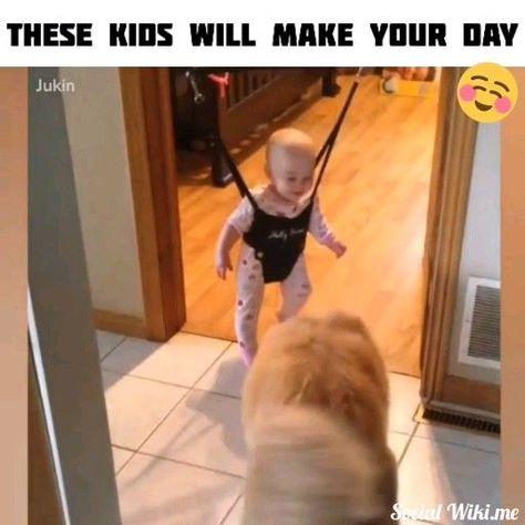 So Cute! 😍 - Σκύλοι - #Cute #Σκύλοι