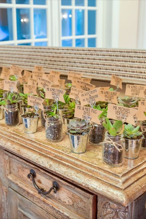 Cute succulent escort cards for a wedding in NJ | Photo: Anthony Ziccardi Studios