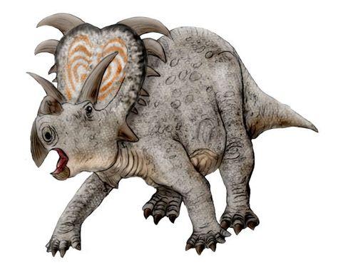 Google Image Result For Userstellurian Teach Dinosaur Apato2