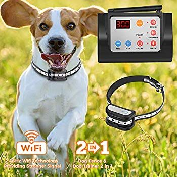 Hokita Dog Fence Wireless And Training Collar Outdoor 2 In 1
