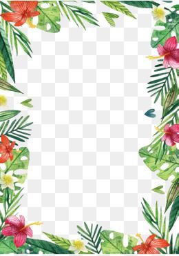 Hawaii Flowers And Plants Hawaii Flowers Free Watercolor Flowers Flower Png Images