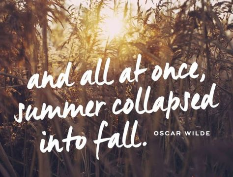 And all at once, summer collapsed into fall.