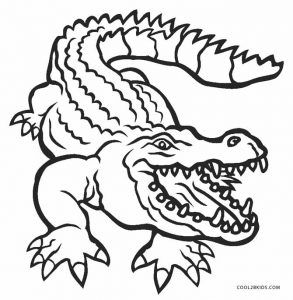 Alligator Coloring Pages With Images Coloring Pages For Kids