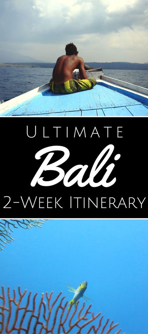 2 Weeks In Bali: My Ultimate Road Trip Itinerary For Scuba