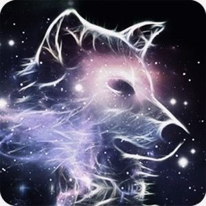 Anime Galaxy Wolf Wallpaper Materi Pelajaran 6