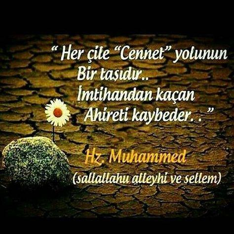 Hz Muhammed Sözleri Güzel Sözler Allah Muhammed Mustafa Ve Islam