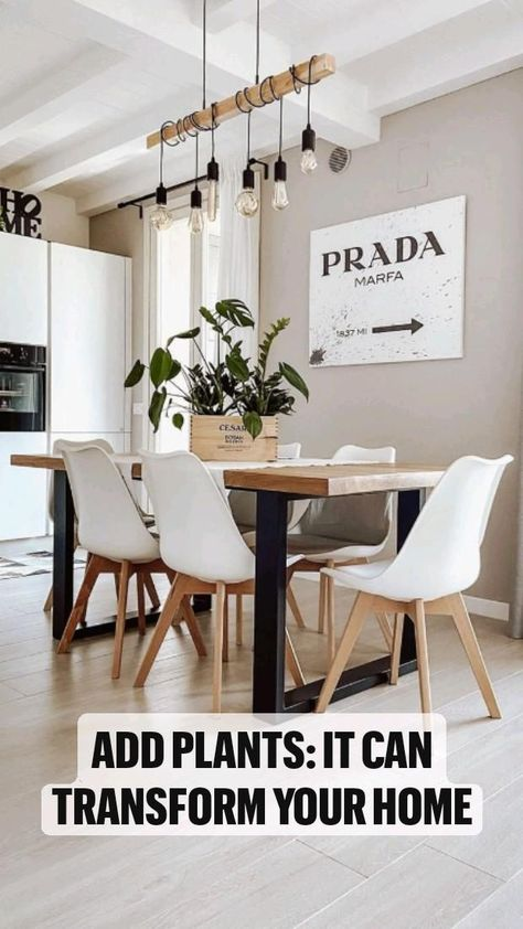 Add Plants: it can transform Your Home