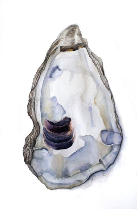 "Custom Artwork- Personalized watercolor painting of an original oyster shell. The Process: -Choose a canvas/paper size from the drop down menu. The sizes available are: 5 x 7 - $50 8 x 10 - $100 9 x 12 - $125 11"" x 14"" – $150 12 x 18 - $180 16"" x 20"" – $225 18"" x 24"" – $300 24"" x"