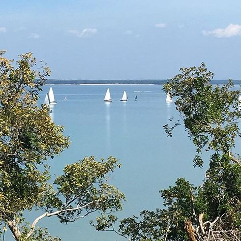 Sailing boats on Darwin Harbour. Did you know Darwin Harbour is 7 times the size of Sydney Harbour?  Neither did I #darwin #sailingboats #blueskies #coastalblues #coastalstyle #travelisgoodforthesoul