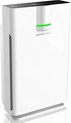 New Hathaspace Smart True Hepa Air Purifier 2 0 Extra Large Rooms Medical Grade H13 Hepa Filter 5 In 1 Home Air Cleaner Allergies Asthma Pets Odors Smok In 2020 Hepa Air Purifier True Hepa