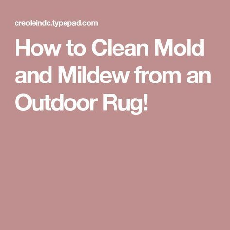 How To Clean Mold And Mildew From An Outdoor Rug Outdoor Rugs Mold Remover Mold And Mildew