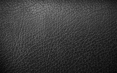 تحميل خلفيات الجلد الأسود الخلفية 4k أنماط الجلود جلدية القوام جلد أسود الملمس خلفيات سوداء جلد الخلفيات ماكرو الجلود Besthqwallpapers Com