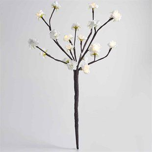 Light Up Cherry Blossom Tree Cherry Blossom Tree Blossom Trees Cherry Blossom