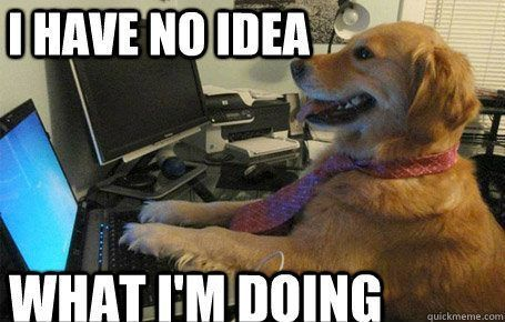 Image result for dog on computer