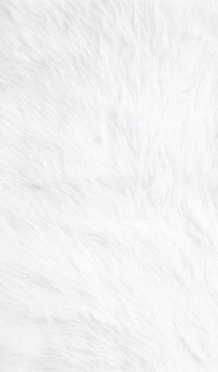 Trendy Plain White Screen Wallpapers Ideas White Wallpaper For Iphone White Background Wallpaper White Wallpaper Cool white iphone wallpaper