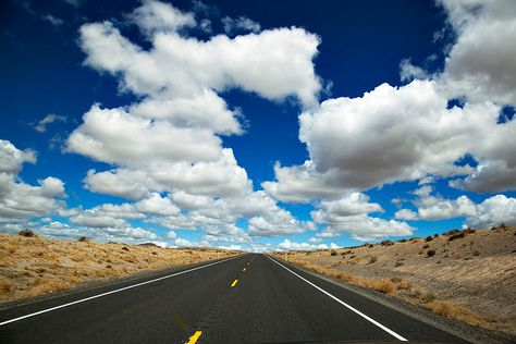 Planning my epic road trip across America with Sophie, we will most defiantly be travelling on this highway!