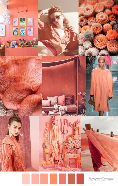 LIVING CORAL by Pattern Curator
