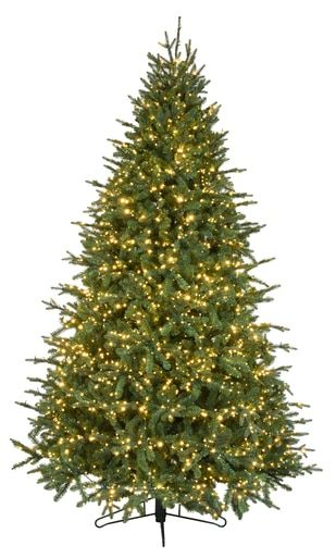 7 5 Canadian Balsam Fir With Color Changing Balsam Fir Christmas Tree Fraser Fir Christmas Tree Led Christmas Tree