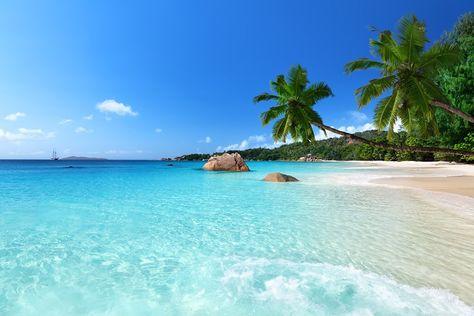 Seychellen - Einfach traumhaft schön!