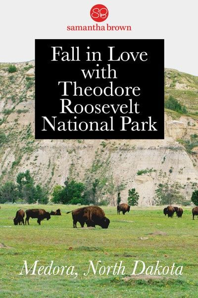 Fall In Love With Theodore Roosevelt National Park Theodore