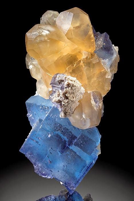 Geology IN: Gorgeous specimen featuring golden Calcite crystals clustered atop deep blue Fluorite.
