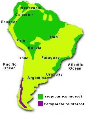 Amazon Rainforest World Map : amazon, rainforest, world, Amazon, Rainforest