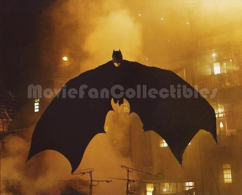 Batman Begins 8x10 Color Photo Winged Bat in Flight Christian Bale