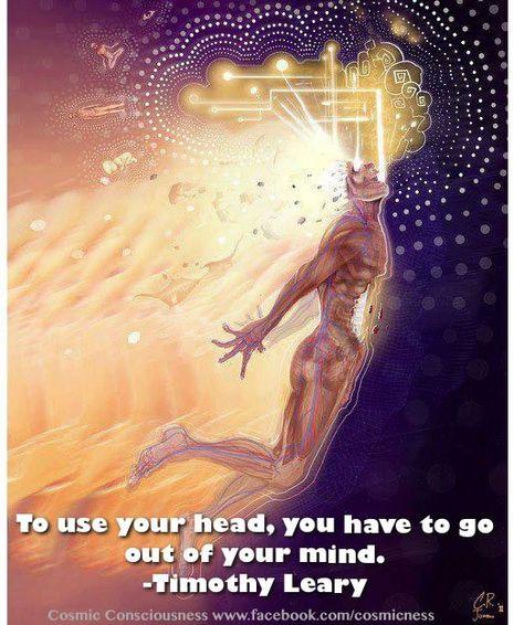 EL BLOG DE ERNESTOIDE 2: Drugstore: LSD & Timothy Leary