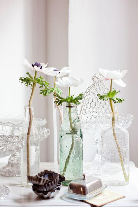Anemoni #anemoni #flowers #spring   www.alices-adventuresinwonderland.com