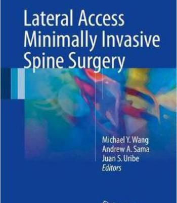 Lateral Access Minimally Invasive Spine Surgery Pdf Spine