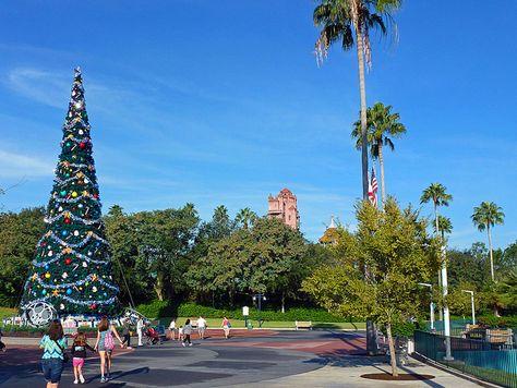 Disney's Hollywood Studios. Photo by David Brown.