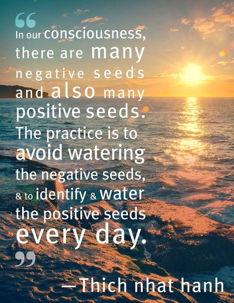f3e960b98aa41c3b19570ea256f114d1--seeds-spiritual-inspiration.jpg?b=t