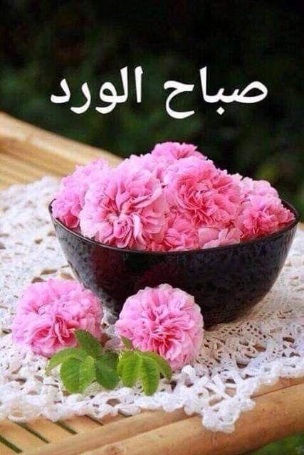 ما أجمل النفوس المشرقة التي ترسم الأمل لها ولمن حولها وتهدينا الورد لتخبرنا أن ال Good Night Flowers Good Morning Roses Good Morning Images Flowers