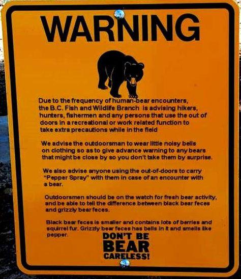 hunting warning signs WARNING BLACK BEARS Sign fishing black bears bears