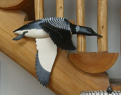 Wall mount Common Loon