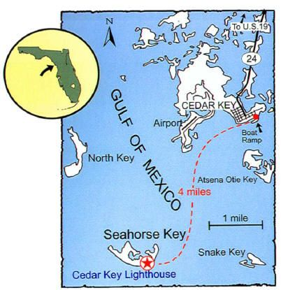 Pinterest Cedar Key Florida Map on