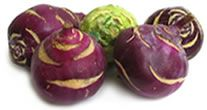German Food Guide - Kohlrabi  Nutritional information and food preperation recipes for Kohlrabi.  The leaves contain 3x the nutrients as the stem.