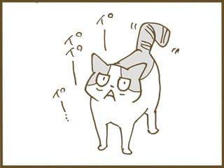 リッちゃん要求する くるねこ大和 くるねこ大和 ねこ 猫 病気