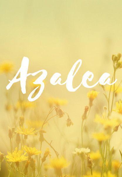 Azalea Gender Girl Origin Greek Meaning Name Of A Flower Azalea Baby Names Hispanic Baby Names Ideas In 2020 Baby Names Baby Girl Names Southern Baby Names