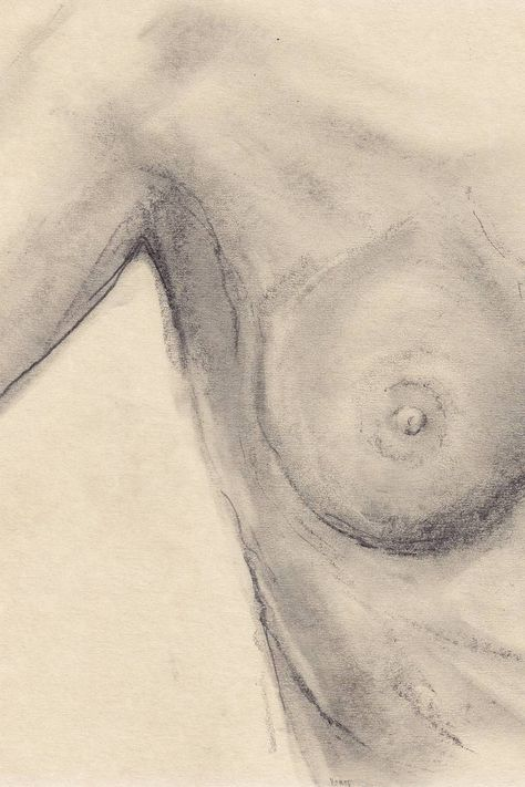 breast; after edward weston: pencil drawing on handmade paper