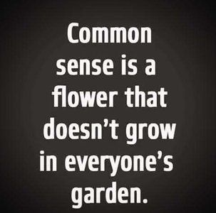 The Business of A.: Quick Tip for Surrogacy Agency Owners- Keep Your Cool Because Common Sense is a Flower that Doesn't Grow in Everyone's Garden! Truth Quotes, Wise Quotes, Great Quotes, Funny Quotes, Inspirational Quotes, Truth Meme, Awesome Quotes, Motivational, True Words