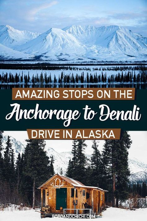 The 10 most spectacular stops on the scenic drive from Anchorage to Denali plus driving in Alaska travel and safety tips for an unforgettable trip. Anchorage To Denali, Denali Alaska, Anchorage Alaska Living, Alaska Usa, Alaska Travel, Travel Usa, Alaska Trip, Cruise Travel, Cruise Tips