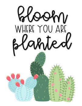 Cactus Saying Printable | Library Stuff | Cactus pictures